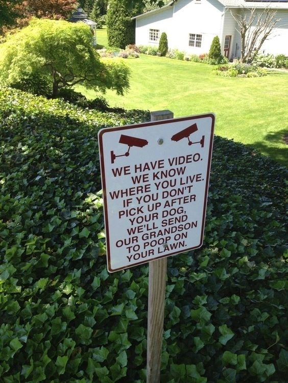 Grass - WE HAVE VIDEO. WE KNOW WHERE YOU LIVE IF YOU DON'T PICK UP AFTER YOUR DOG, WE'LL SEND OUR GRANDSON TO POOP ON YOUR LAWN.