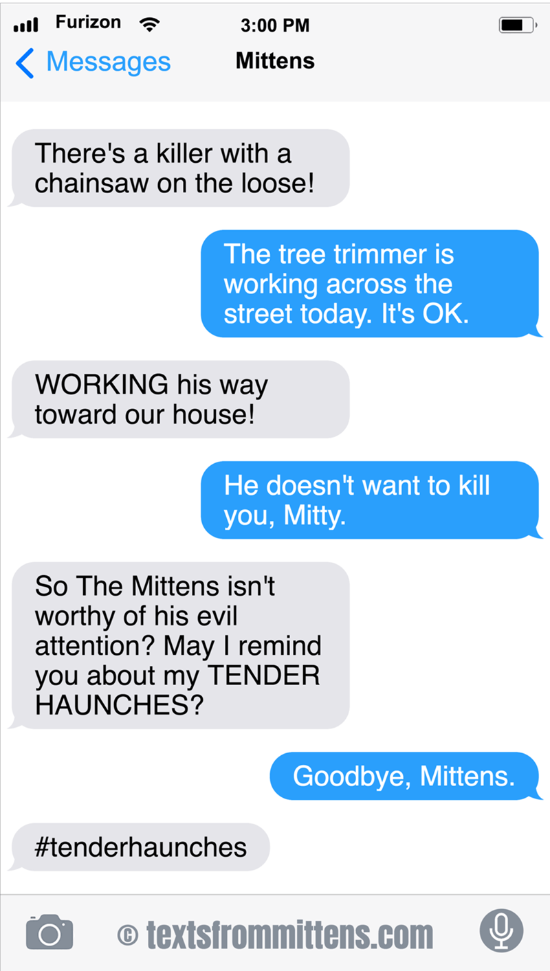 cute cat afraid of the tree trimmer