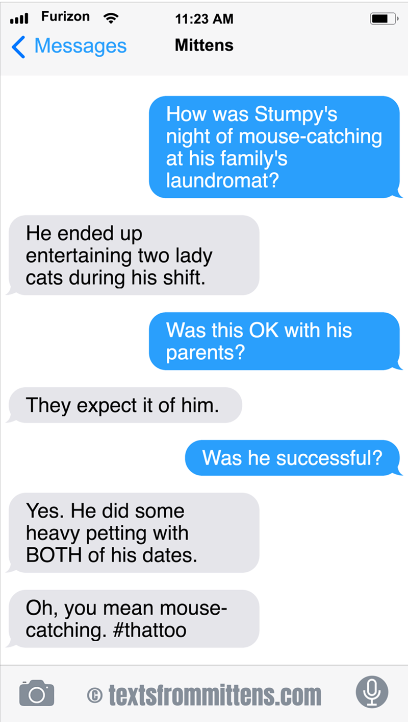 cute cat caturday talking about its mouse-catching experience