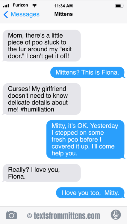 cute cat mittens complaining to his girlfriend about poop mishaps