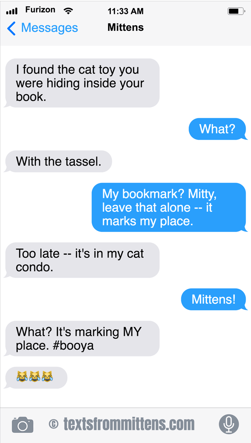 cute cat caturday mittens thinks a bookmark is a cat toy