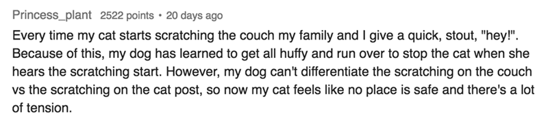 """Text Every time my cat starts scratching the couch my family and I give a quick, stout, """"hey!"""" Because of this, my dog has learned to get all huffy and run over to stop the cat when she hears the scratching start. However, my dog can't differentiate the scratching on the couch vs the scratching of tension on the cat post, so now my cat feels like no place is safe and there's a lot"""