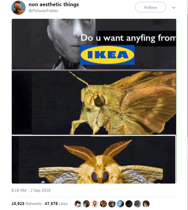 Organism - non aesthetic things Follow @PicturesFolder Do u want anyfing from IKEA 8:18 AM 2 Sep 2018 10,923 Retweets 47,678 Likes