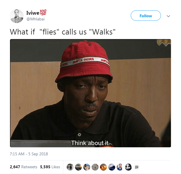 """Text - Iviwel00 Follow @Mhlabai What if """"flies"""" calls us """"Walks"""" o Think about it - 5 Sep 2018 7:15 AM 2,647 Retweets 5,595 Likes"""