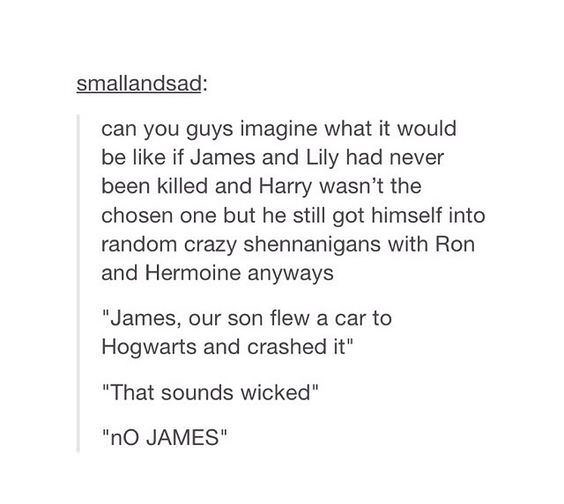 "memes - Text - smallandsad: can you guys imagine what it would be like if James and Lily had never been killed and Harry wasn't the chosen one but he still got himself into random crazy shennanigans with Ron and Hermoine anyways ""James, our son flew a car to Hogwarts and crashed it"" ""That sounds wicked"" ""nO JAMES"""