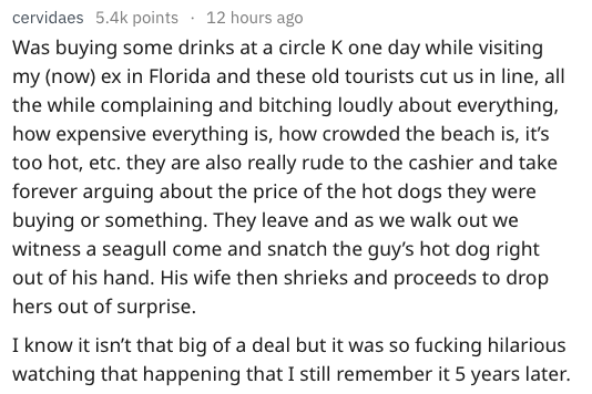 Text - cervidaes 5.4k points 12 hours ago Was buying some drinks at a circle K one day while visiting my (now) ex in Florida and these old tourists cut us in line, all the while complaining and bitching loudly about everything, how expensive everything is, how crowded the beach is, it's too hot, etc. they are also really rude to the cashier and take forever arguing about the price of the hot dogs they were buying or something. They leave and as we walk out we witness a seagull come and snatch th