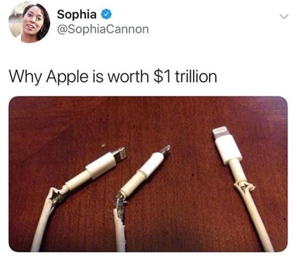 meme about apples lightning port cables always breaking and that's why they are rich