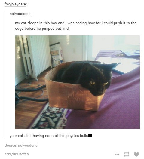 work meme - Cat - foxyplaydate notyoudonut: my cat sleeps in this box and i was seeing how far i could push it to the edge before he jumped out and your cat ain't having none of this physics bulls Source: notyoudonut 199,909 notes