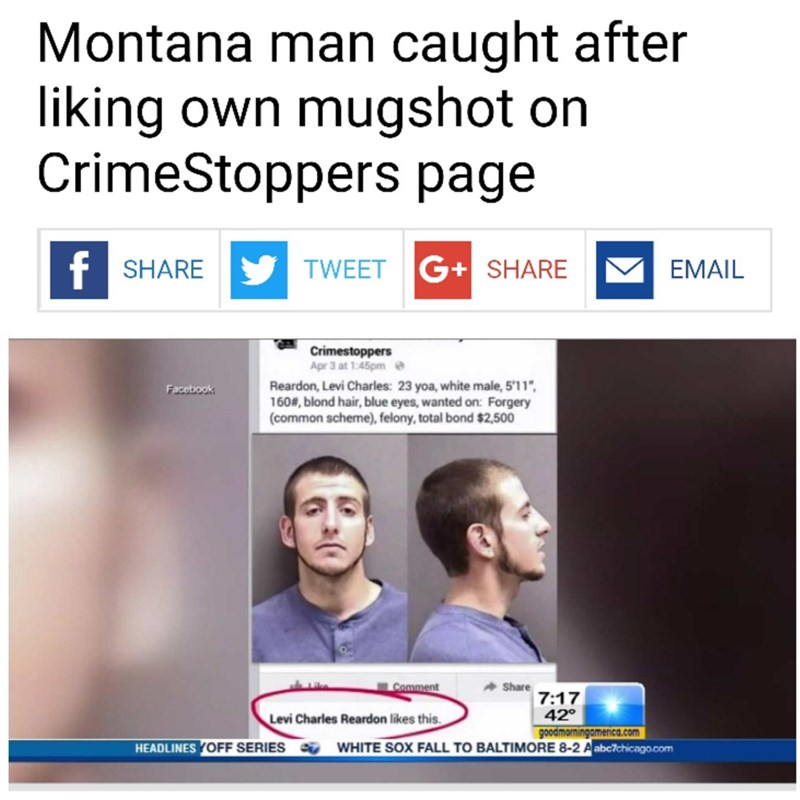 Text - Montana man caught liking own mugshot on CrimeStoppers page after f SHARE TWEET G+ SHARE EMAIL Crimestoppers Apr 3 at 1:45pme Reardon, Levi Charles: 23 yoa, white male, 5'11 160#, blond hair, blue eyes, wanted on: Forgery (common scheme), felony, total bond $2,500 Facebook Comment Share 7:17 42 goodmorningamerica.com Levi Charles Reardon likes this. WHITE SOX FALL TO BALTIMORE 8-2 A abc7chicago.com HEADLINES YOFF SERIES