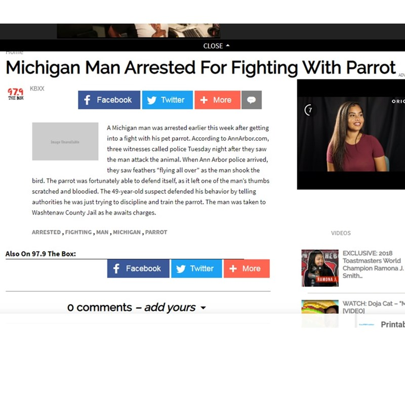 """Text - CLOSE поme Michigan Man Arrested For Fighting With Parrot AD 979 KBXX THE BOX f Facebook Twitter + More ORIC A Michigan man was arrested earlier this week after getting into a fight with his pet parrot. According to AnnArbor.com Image Unavallable three witnesses called police Tuesday night after they saw the man attack the animal. When Ann Arbor police arrived, they saw feathers """"flying all over"""" as the man shook the bird. The parrot was fortunately able to defend itself, as it left one o"""