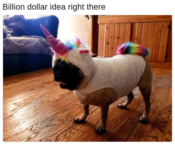 meme of pug wearing unicorn outfit