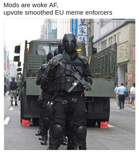 EU meme enforcer meme