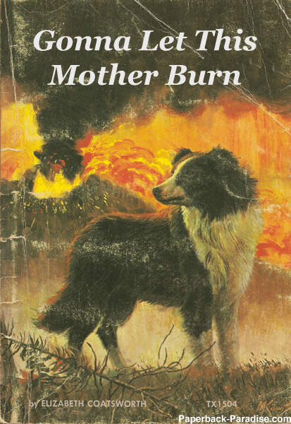 Book cover - Gonna Let This Mother Burn by ELIZABETH COATSWORTH TX1504 Paperback-Paradise.com
