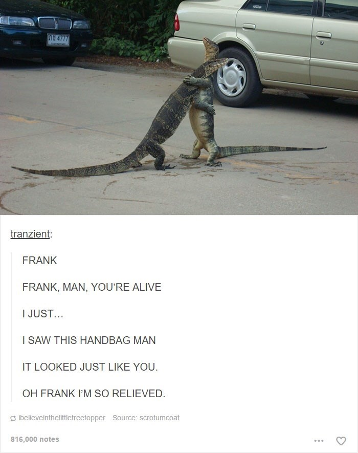 funny meme of two lizards hugging in the street talking about how he thought he was a handbag