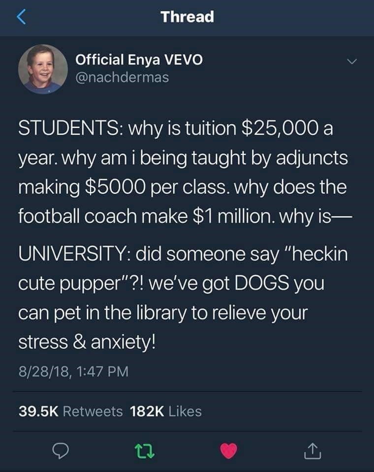 """meme - Text - Thread Official Enya VEVO @nachdermas STUDENTS: why is tuition $25,000 a year. why am i being taught by adjuncts making $5000 per class. why does the football coach make $1 million. why is- UNIVERSITY: did someone say """"heckin cute pupper""""?! we've got DOGS you can pet in the library to relieve your stress & anxiety! 8/28/18, 1:47 PM 39.5K Retweets 182K Likes"""