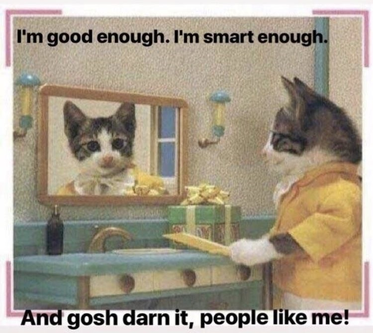 wholesome meme of a cat telling himself that he's good and smart enough