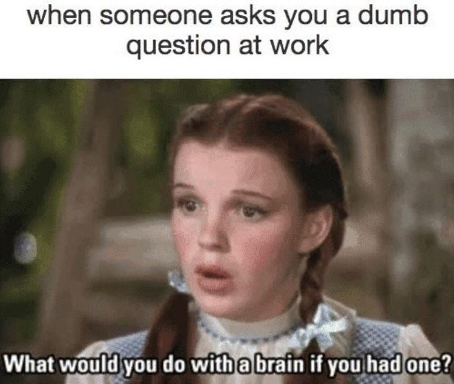 work meme about getting stupid questions with Dorothy asking about Scarecrow's brain