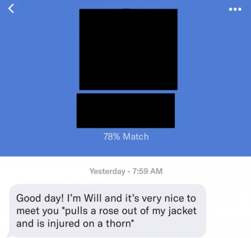 Text - LL 78% Match Yesterday -7:59 AM Good day! I'm Will and it's very nice to meet you *pulls a rose out of my jacket and is injured on a thorn*