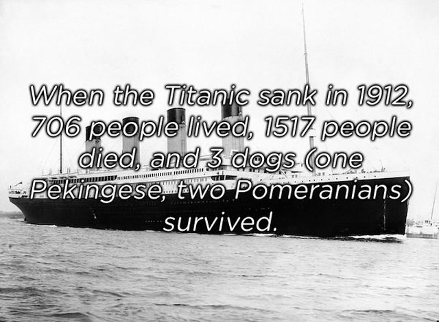 Water transportation - When the Titanic sank in 1912 706 people lived, 1517 people died and 3 dogs (one Pekingese two Pomeranians) survived
