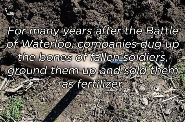 Soil - For many years after the Battle of Waterloo companies dug up the bones of fallen soldiers oround them up and sold them as fertilizer