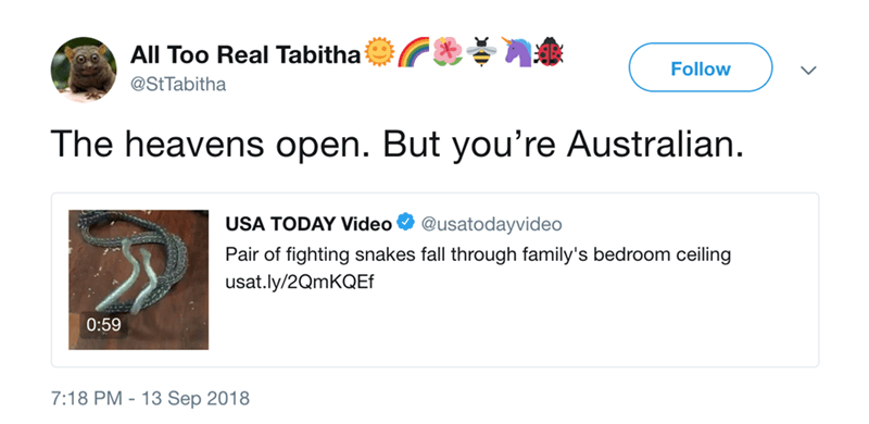 Text - All Too Real Tabitha Follow @StTabitha The heavens open. But you're Australian USA TODAY Video @usatodayvideo Pair of fighting snakes fall through family's bedroom ceiling usat.ly/2QmKQEf 0:59 7:18 PM 13 Sep 2018
