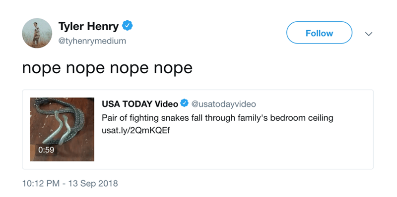Text - Tyler Henry Follow @tyhenrymedium nope nope nope nope USA TODAY Video @usatodayvideo Pair of fighting snakes fall through family's bedroom ceiling usat.ly/2QmKQEf 0:59 10:12 PM 13 Sep 2018