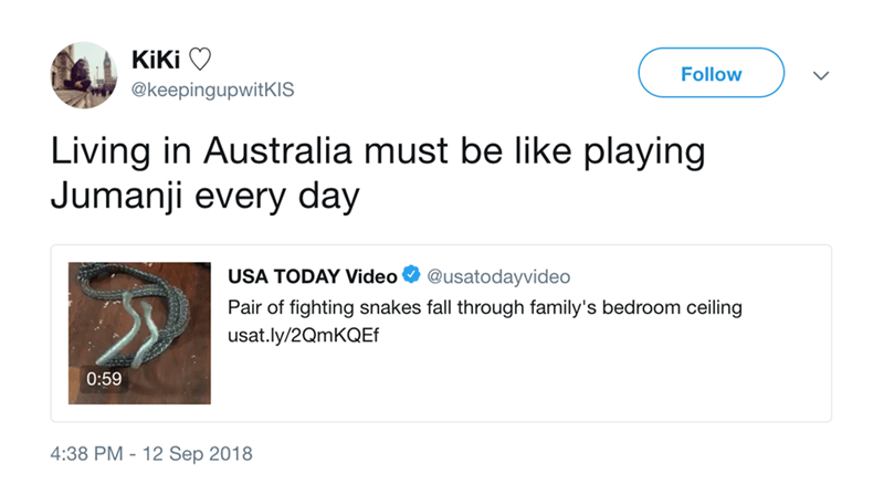 Text - KiKi Follow @keepingupwitKIS Living in Australia must be like playing Jumanji every day USA TODAY Video @usatodayvideo Pair of fighting snakes fall through family's bedroom ceiling usat.ly/2QmKQEf 0:59 4:38 PM 12 Sep 2018