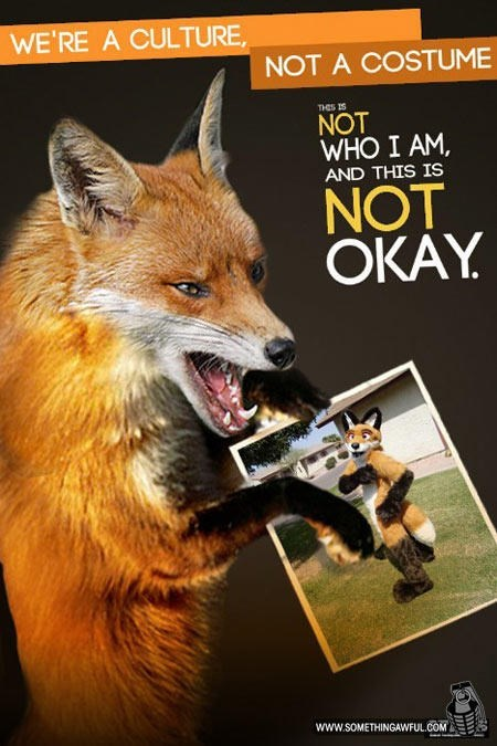 Canidae - WE'RE A CULTURE NOT A COSTUME THES IS NOT WHO I AM AND THIS IS NOT OKAY www.sOMETHINGAWFUL.COM