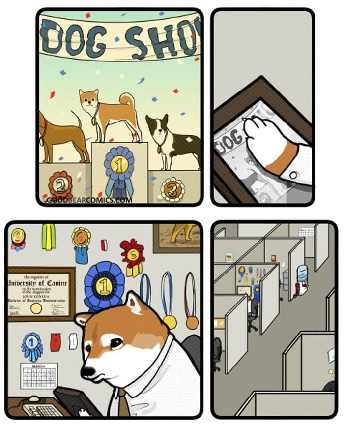 Cartoon - DOG SHO DOG GOODBEARCOMICS.COM the nagents o Iniversity of Canine eeeton joN VONEDA MARCH