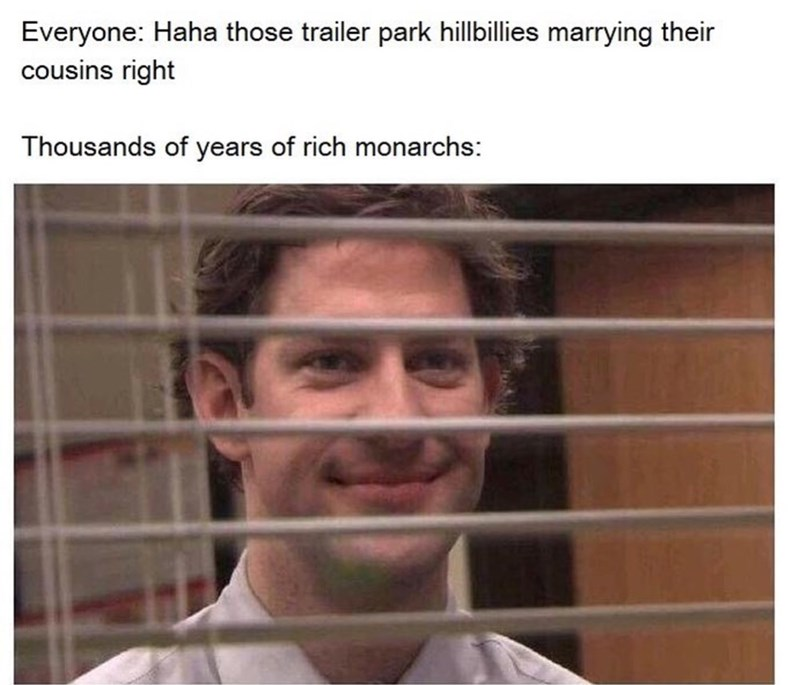 """Caption that reads, """"Everyone: Haha those trailer park hillbillies marrying their cousins right? Thousands of years of rich monarchies:..."""" above a pic of Jim from The Office looking smug through the blinds"""