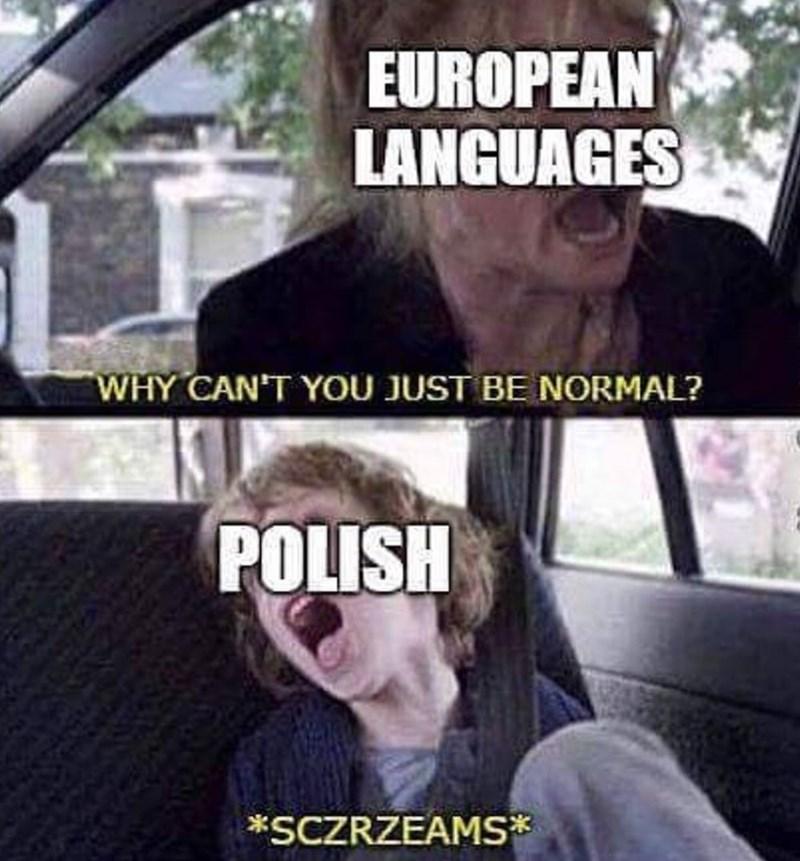 meme - Photo caption - EUROPEAN LANGUAGES WHY CAN'T YOU JUST BE NORMAL? POLISH *SCZRZEAMS