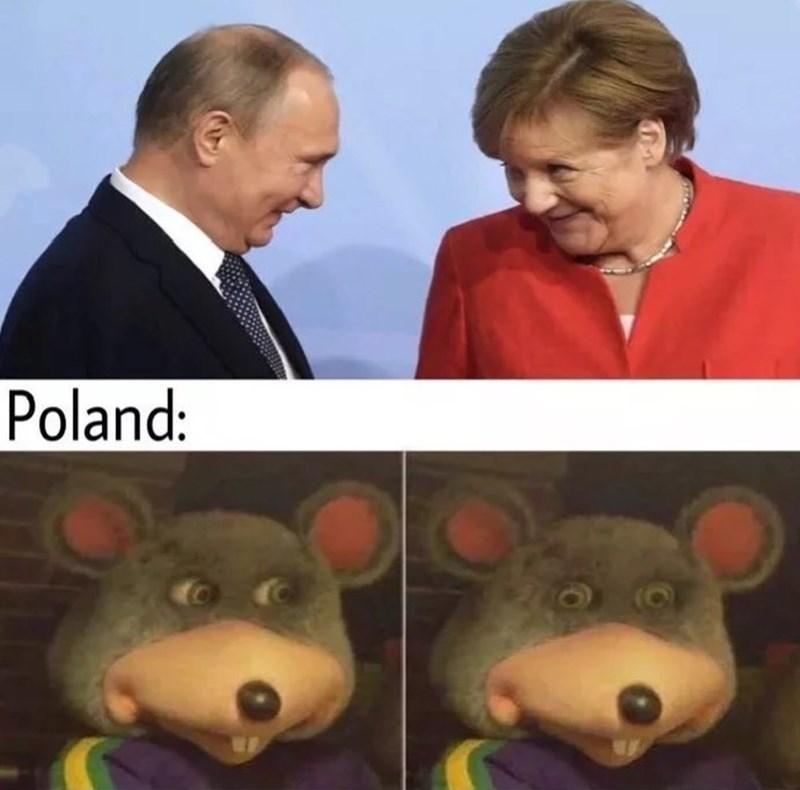 meme - Toy - Poland: