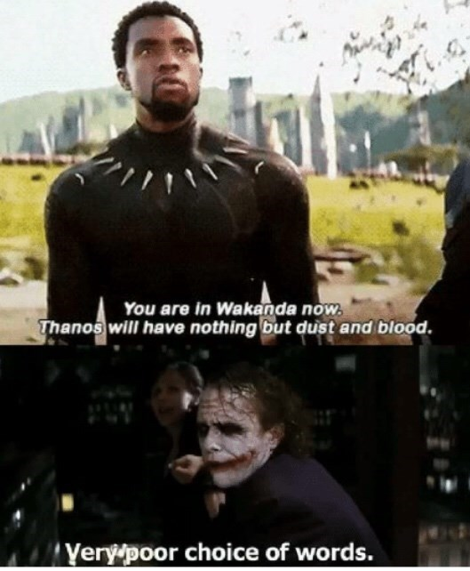 Movie - You are in Wakanda now. Thanos will have nothing but dust and blood. Verypoor choice of words.