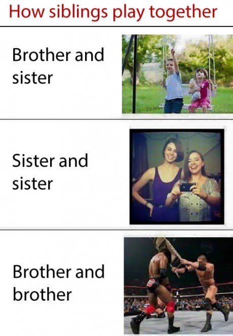 meme - Adaptation - How siblings play together Brother and sister Sister and sister Brother and brother