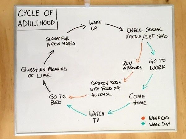 work meme about the sad cycle of adulthood