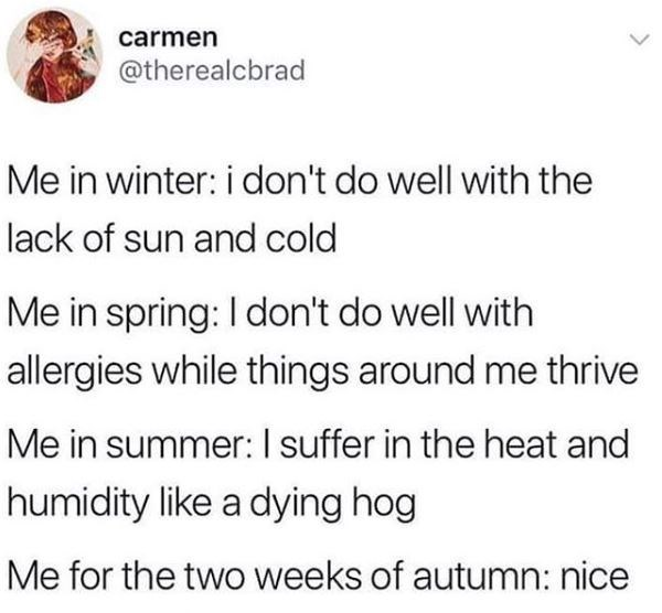 "Tweet that reads, ""Me in winter: I don't do well with the lack of sun and cold; Me in spring: I don't do well with allergies while things around me thrive; Me in summer: I suffer in the heat and humidity like a dying hog; Me for the two weeks of autumn: nice"""
