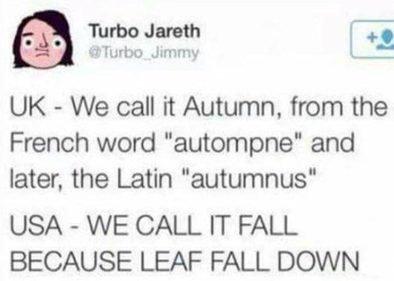 "Text - Turbo Jareth @Turbo Jimmy UK-We call it Autumn, from the French word ""autompne"" and later, the Latin ""autumnus"" USA - WE CALL IT FALL BECAUSE LEAF FALL DOWN"