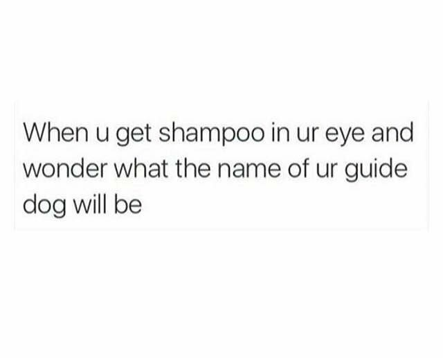 "Text that reads, ""When you get shampoo in your eye and wonder what the name of your guide dog will be"""