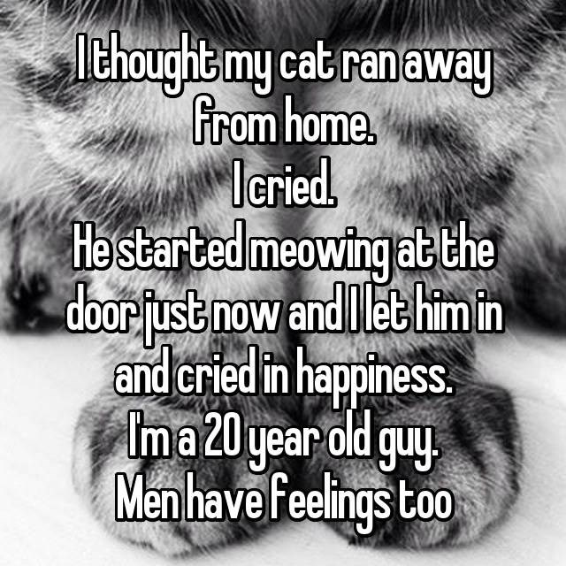 Photo caption - lthoughtmy cat ranaway from home. Ieried Ha started meowing at the dbor fust now and Ilet himin and cried in happiness. Ima20 year old guy Menhave feelings too