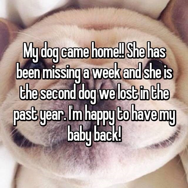 Text - Mydogcame home She has been missing a week and she is the second dogwe lost i the pastyear Im happy bohavemy baby back!