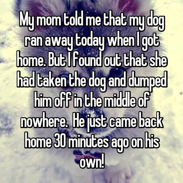 Text - My mom told me that my dag ran away today when lgot home.But Tfound out that she had caken the dog and dumped him off in the middle of nowhere. He just came back home 30minutes ago onhis Own!