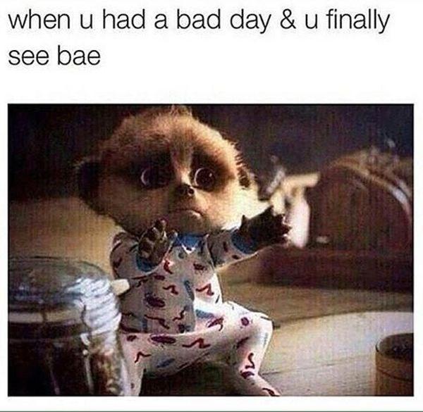 dating meme - Photo caption - when u had a bad day & u finally see bae