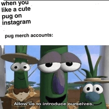 Cartoon - when you like a cute pug on instagram pug merch accounts: Allow us to introduce oureelves,