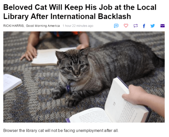 cat meme - Cat - Beloved Cat Will Keep His Job at the Local Library After International Backlash RICKI HARRIS, Good Morning America 1 hour 22 minutes ago Browser the library cat will not be facing unemployment after all