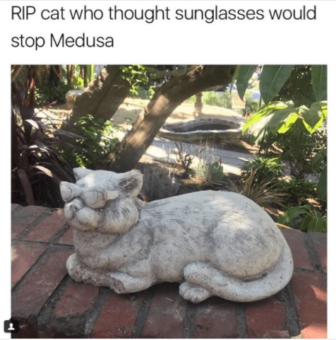 cat meme - Statue - RIP cat who thought sunglasses would stop Medusa
