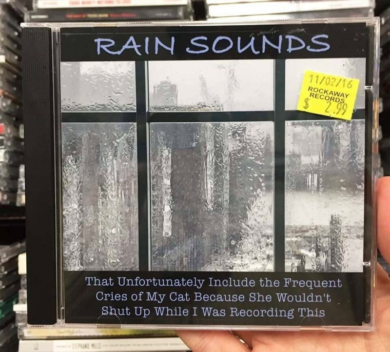 cat meme - Font - RAIN SOUNDS 11/02/16 ROCKAWAY RECORDS $2.99 That Unfortunately Include the Frequent Cries of My Cat Because She Wouldn't Shut Up While I Was Recording This
