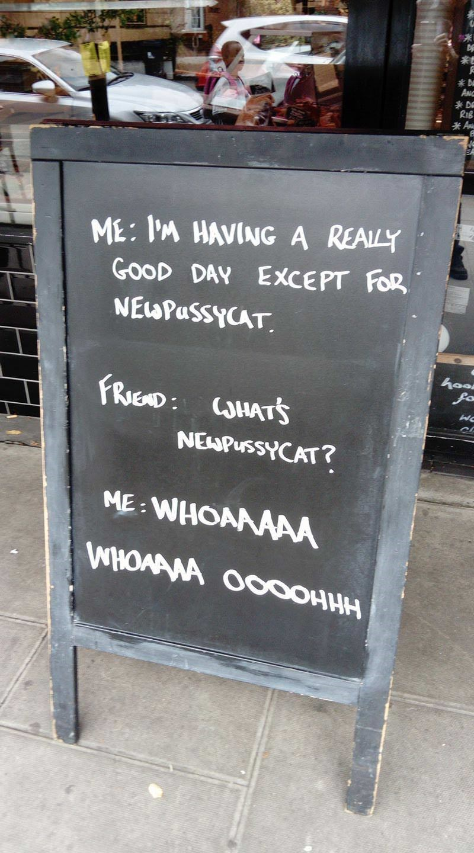 cat meme - Text - D AN D A ME: I'M HAVING A REALY GOOD DAY EXCEPT FOR NEWPassyCAT hoo fo FRIEND: CHATS NEAPUSSYCAT? ME WHOANAAA WHOAAWA O000HHH