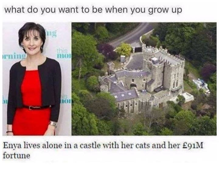 cat meme - Landmark - what do you want to be when you grow up ng this mo rning NS HOU Enya lives alone in a castle with her cats and her £91M fortune