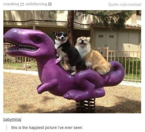 Purple - Vvanking unfollovving Quelle: cute-overload babyminaj this is the happiest picture I've ever seen