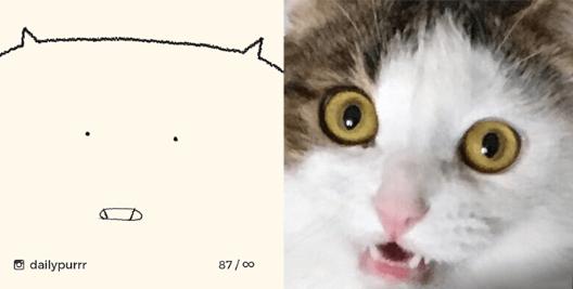Cat - dailypurrr 87/00